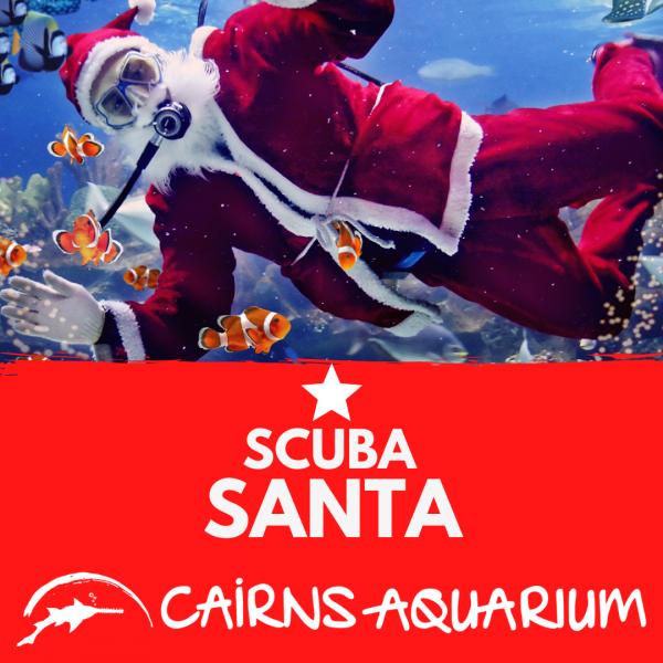 Scuba Santa at Cairns Aquarium!