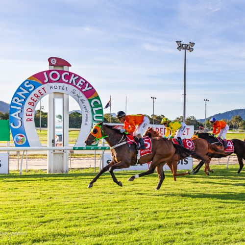 Stakes Day 2021
